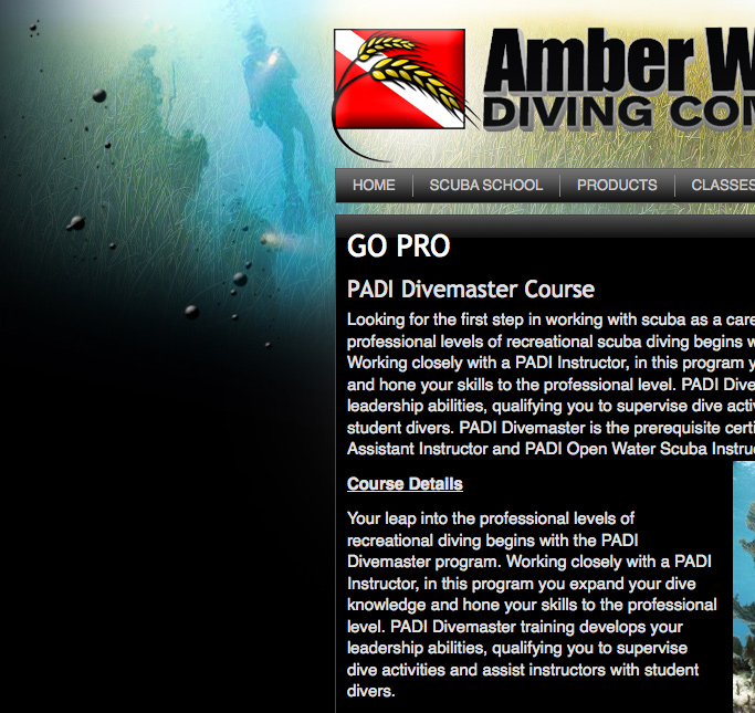 Amber Waves Diving Website Development