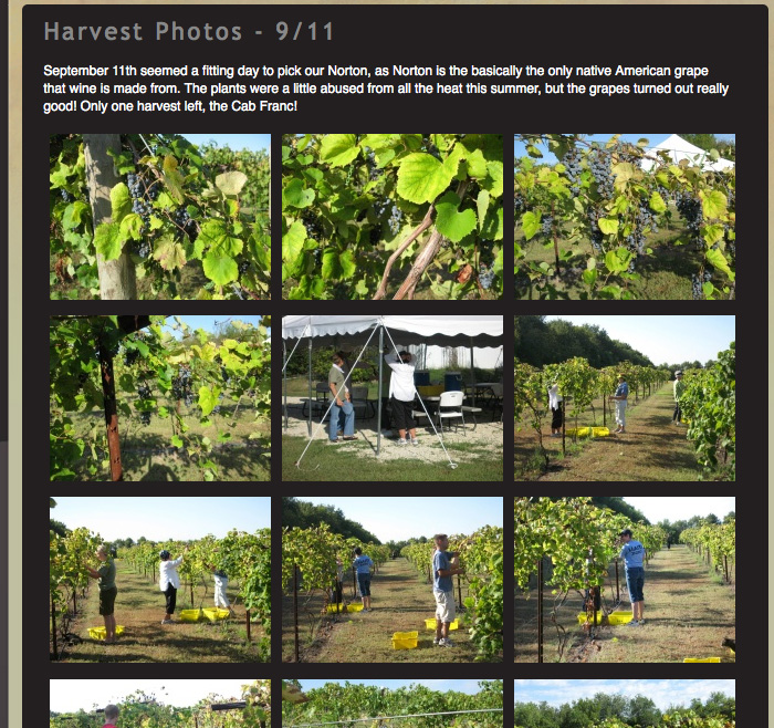 Photo Gallery at Grace Hill Winery © Barrett Morgan Design LLC