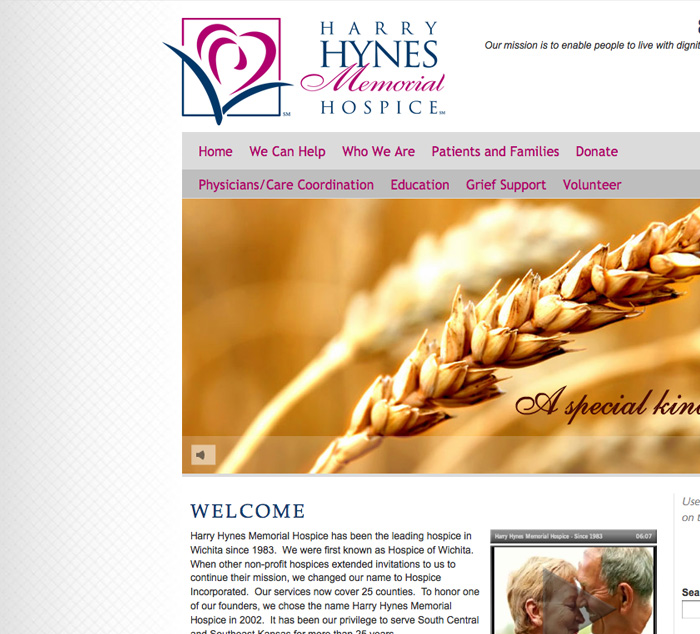 Harry Hynes CMS Website