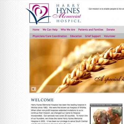 Harry Hynes CMS Development